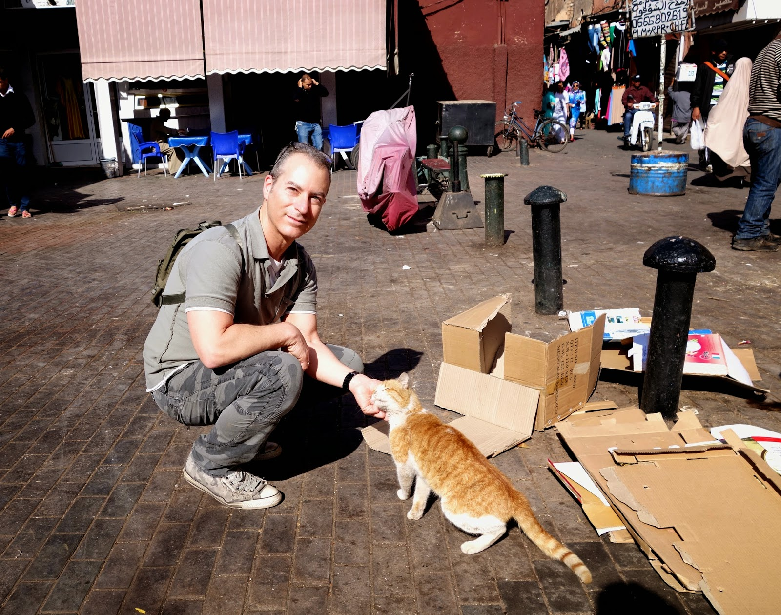 Arnold Plotnick in Morocco with Stray Cat