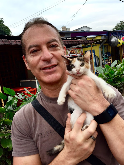 Arnold Plotnick and Stray Kitten