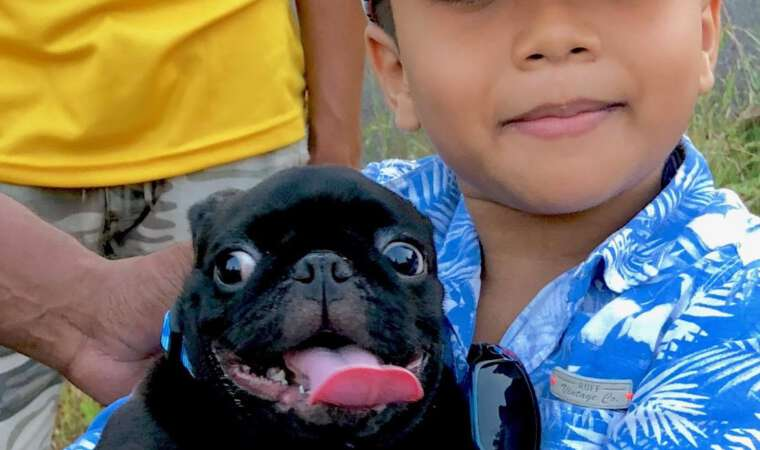 Kid and his Doggie - Mission Rabies Goa India