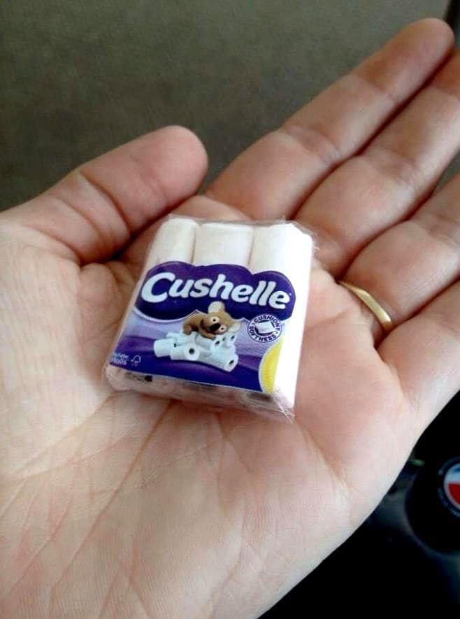Tiny Toilet Paper Scam