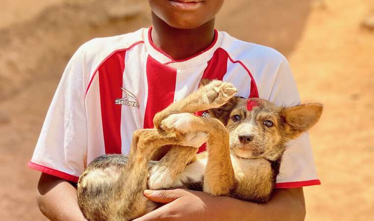 Mission Rabies Ghana 2020 - Boy and his Vaccinated Dog